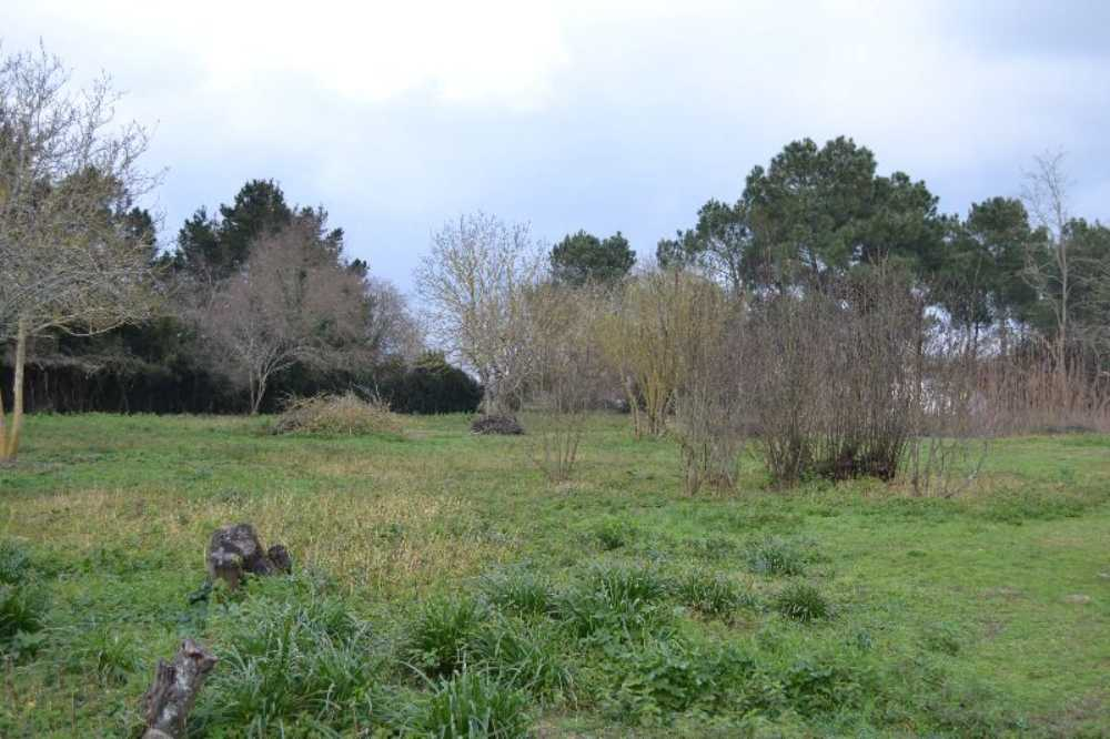 Queyrac Gironde terrein foto 3794017