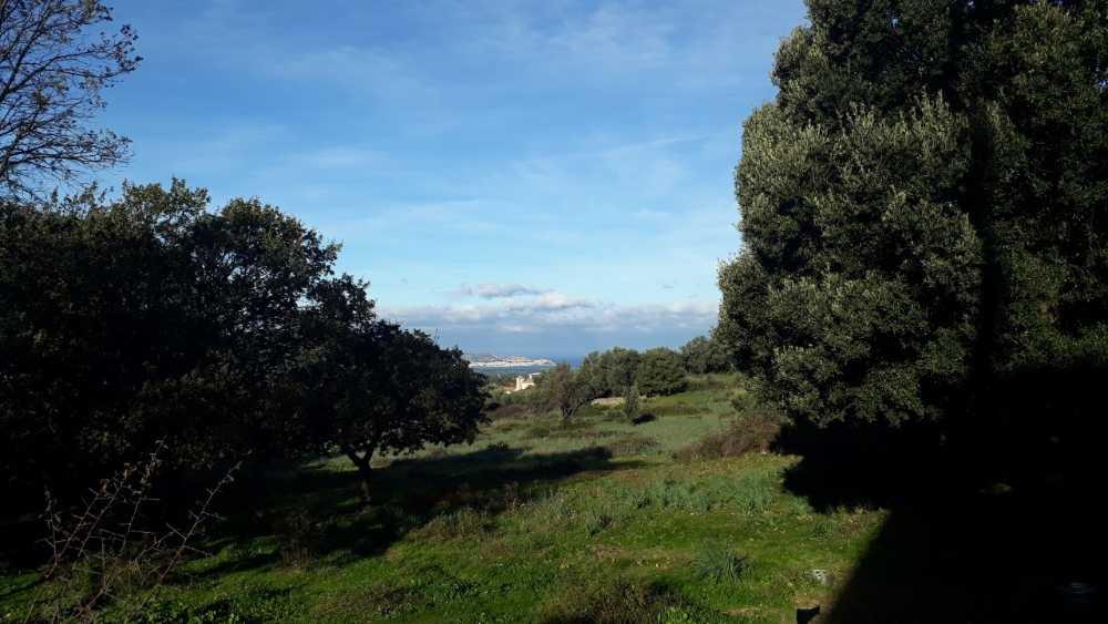Calenzana Haute-Corse Grundstück Bild 3805189
