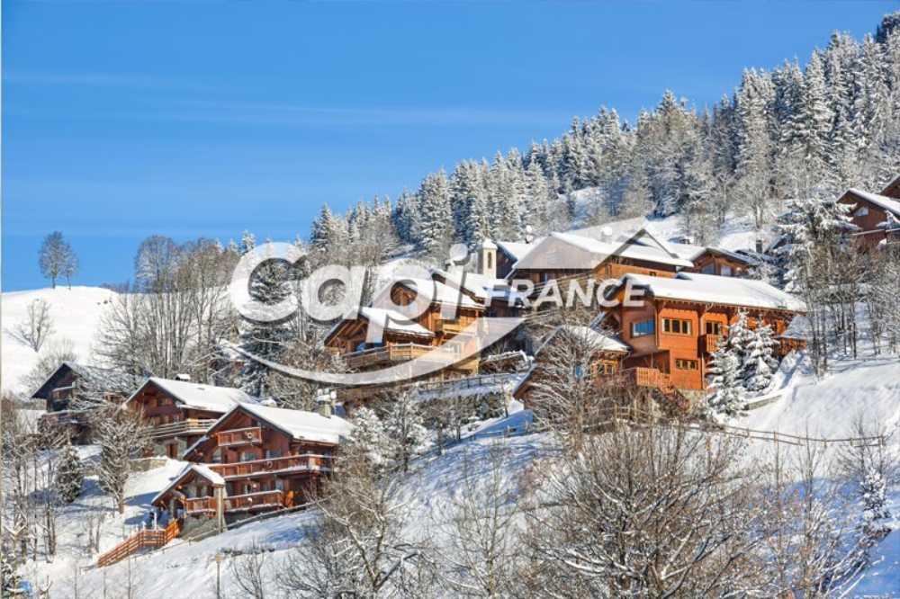 Cluses Haute-Savoie Gewerbeimmobilie Bild 3823599