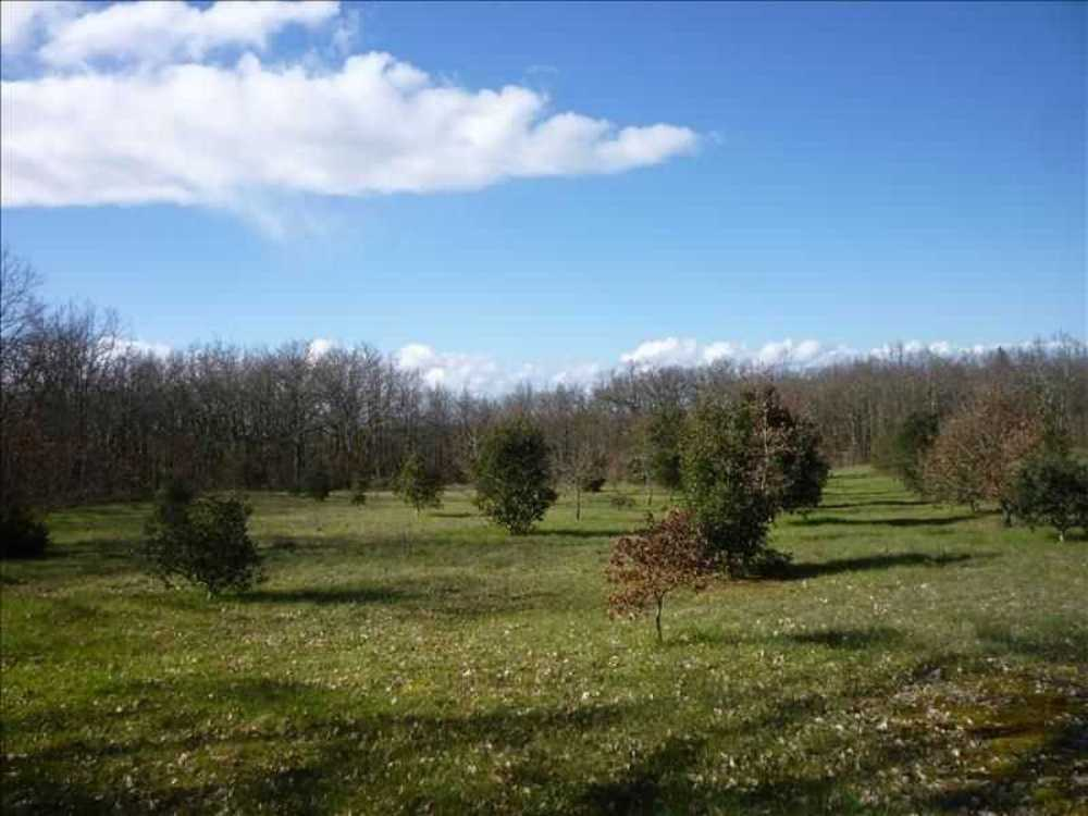 Bourlens Lot-et-Garonne Grundstück Bild 3874177