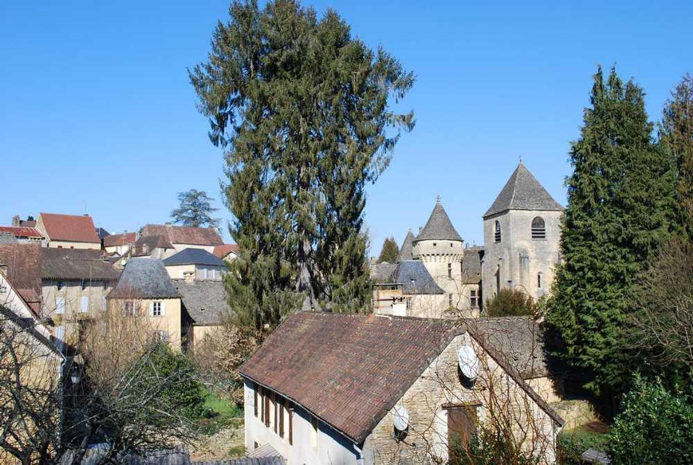 Saint-Geniès Dordogne Haus Bild 3761579