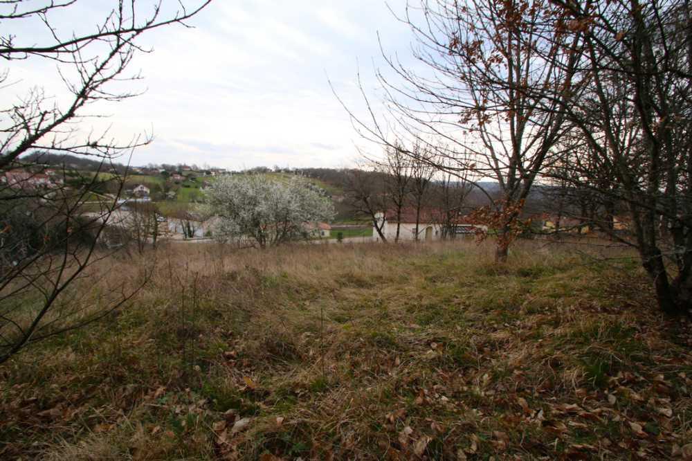 Saint-Pierre-Lafeuille Lot terrein foto 3765834