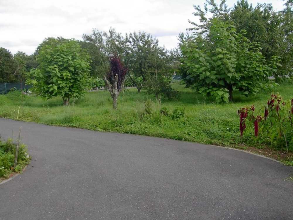 Saizerais Meurthe-et-Moselle Grundstück Bild 3863156