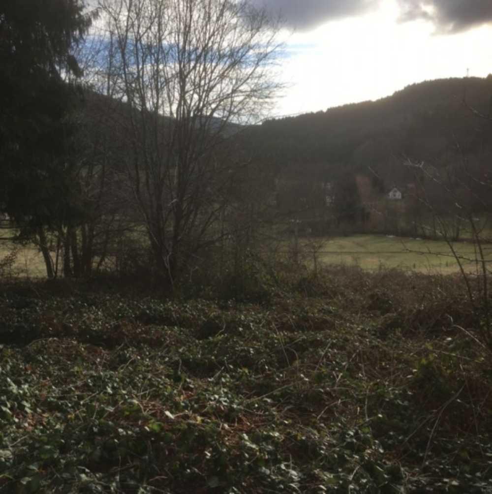 Colroy-la-Roche Bas-Rhin terrain photo 3807443