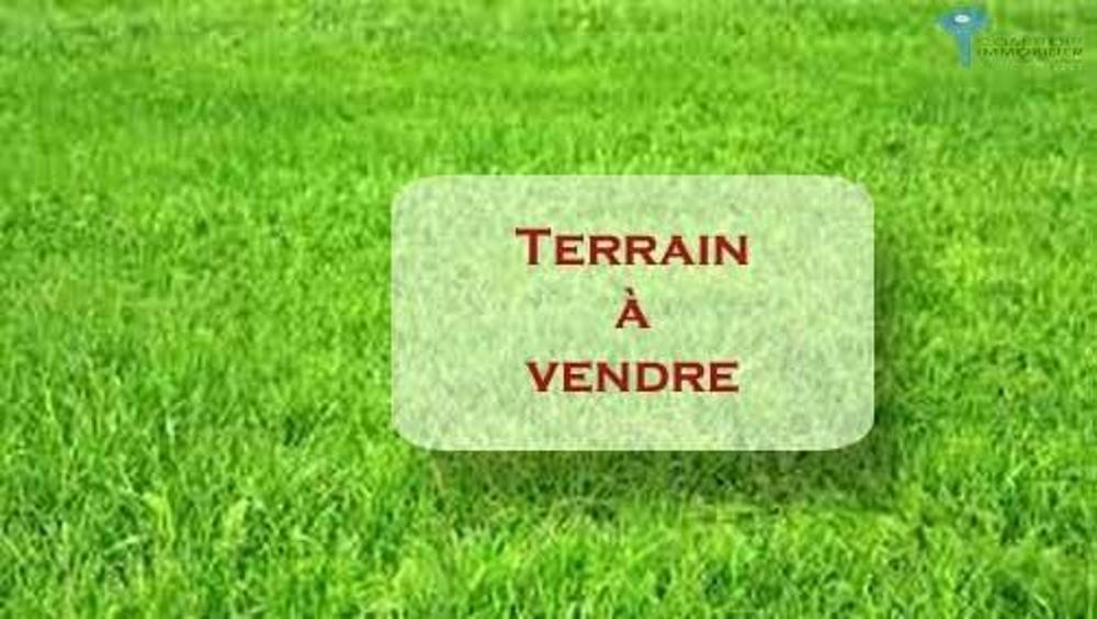 Courtenay Loiret terrein foto 3780276