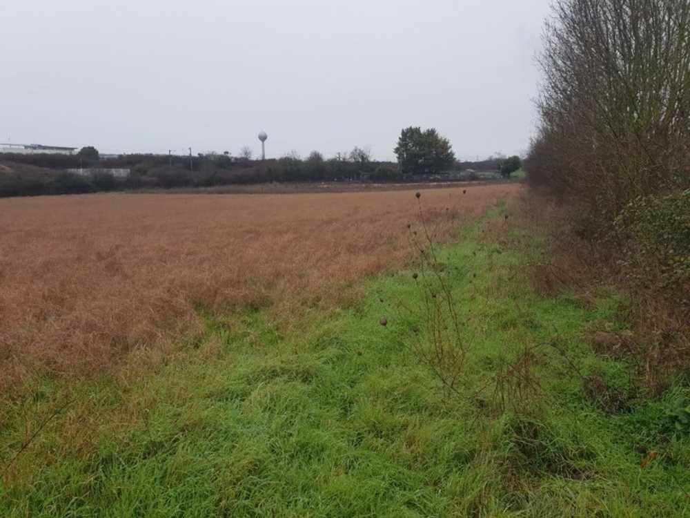 Surgères Charente-Maritime terrein foto 3837698