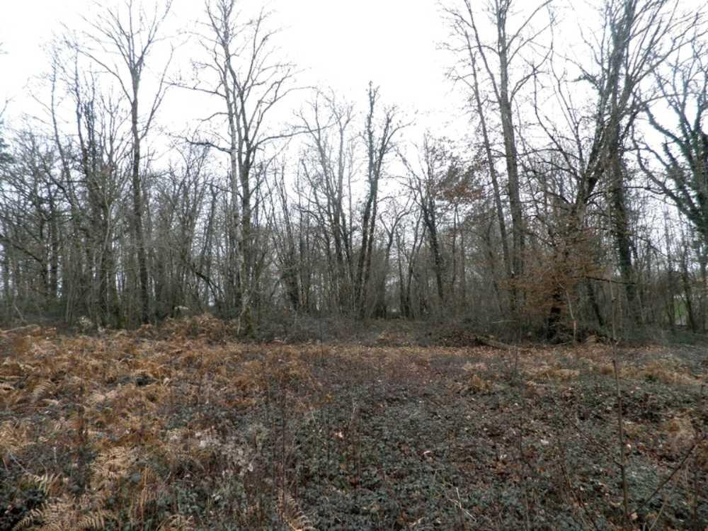 Brantôme Dordogne terrain picture 3834380