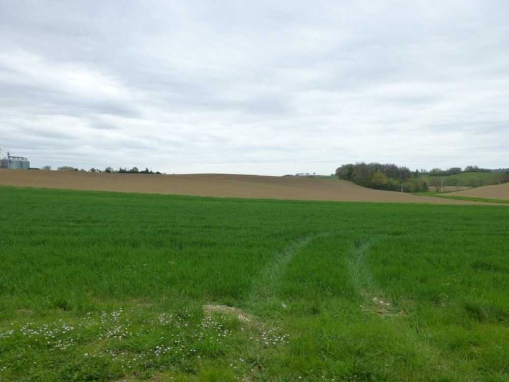 Cadours Haute-Garonne Grundstück Bild 3938569