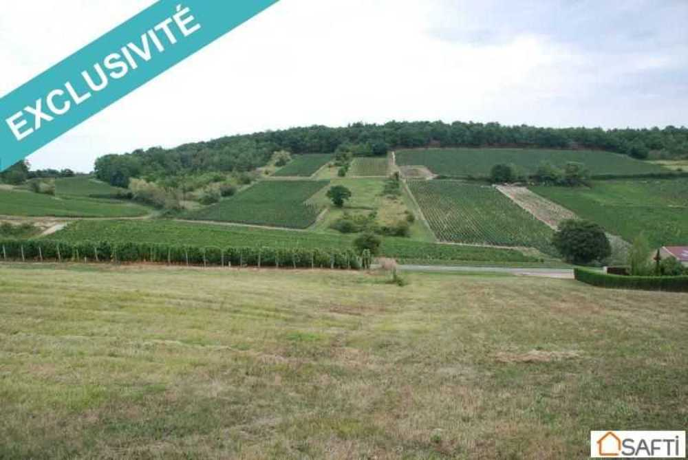 Sancé Saône-et-Loire terrein foto 4086499