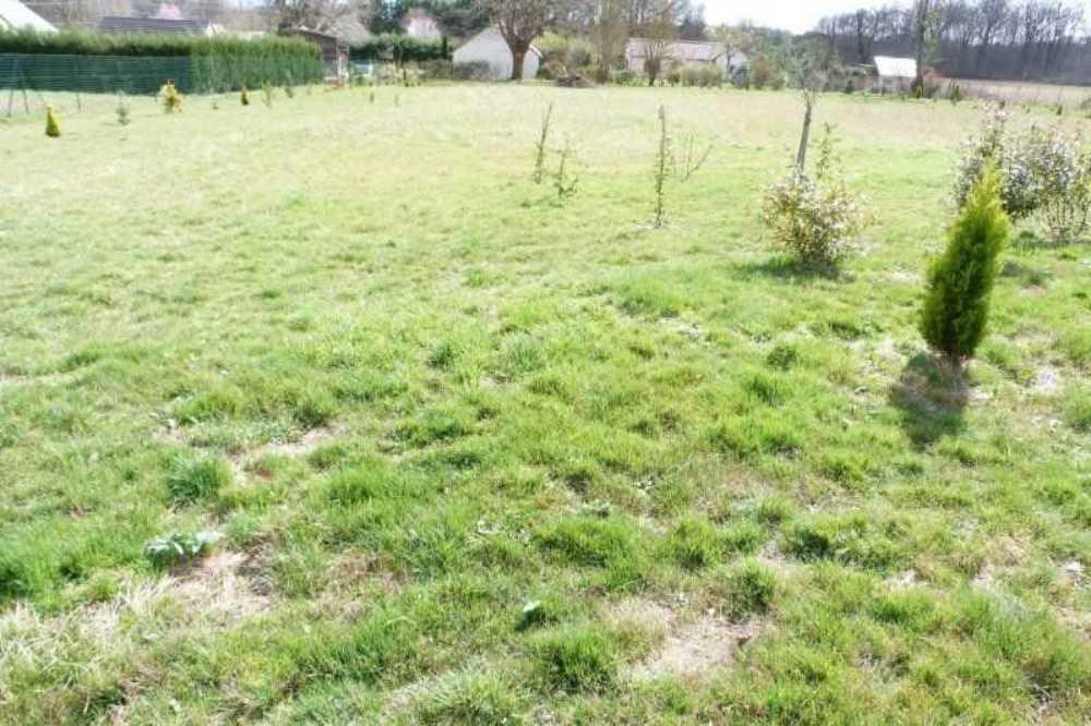 Vignoux-sur-Barangeon Cher Grundstück Bild 4073315