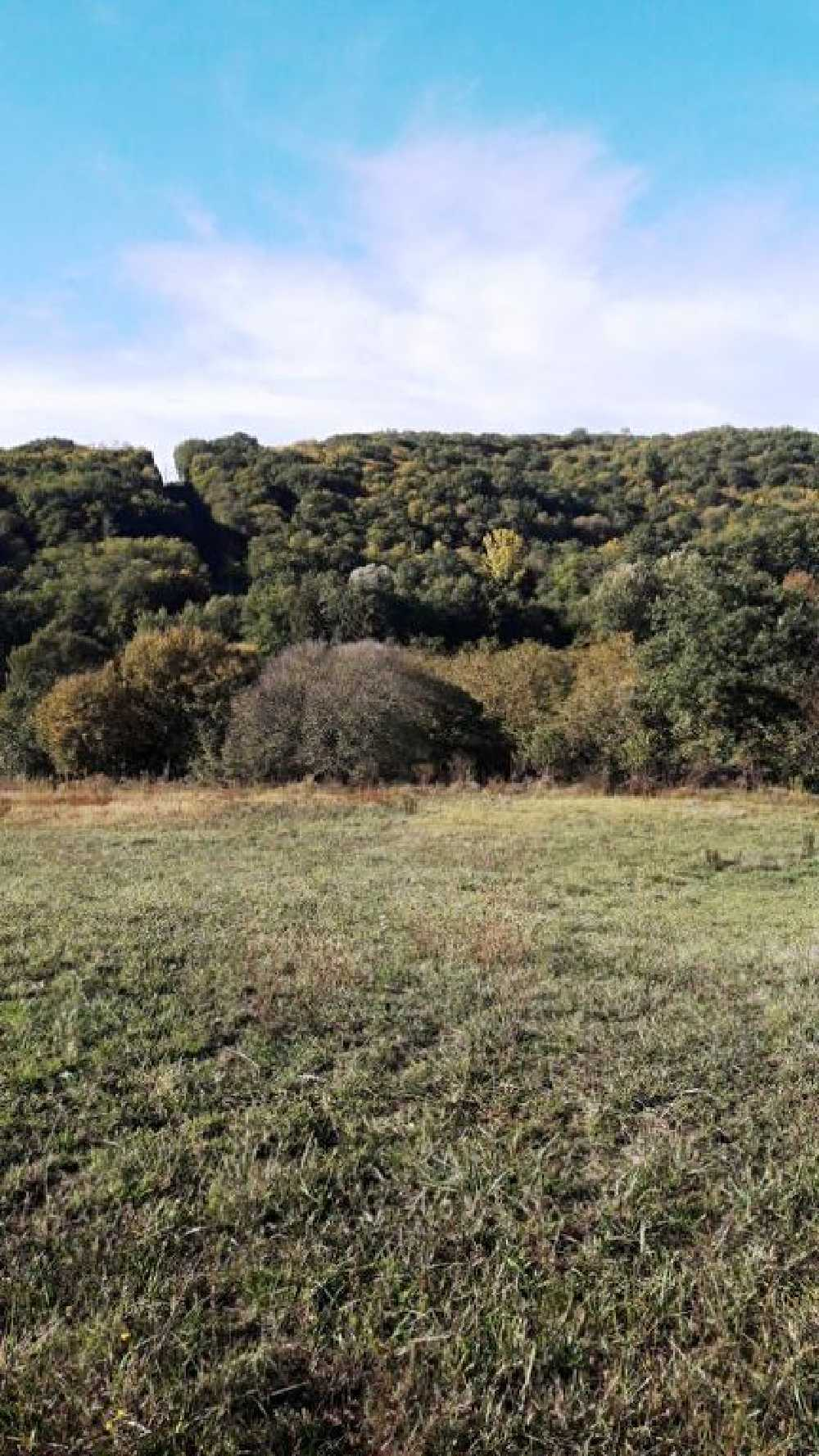 Groléjac Dordogne Grundstück Bild 4063942