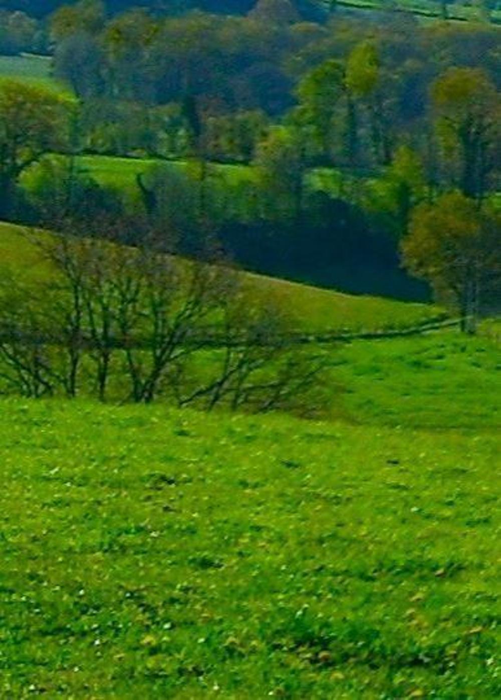 Bayonne Pyrénées-Atlantiques Grundstück Bild 4031188