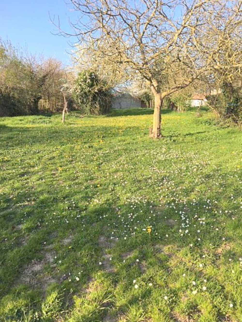 Courçon Charente-Maritime Grundstück Bild 4063816