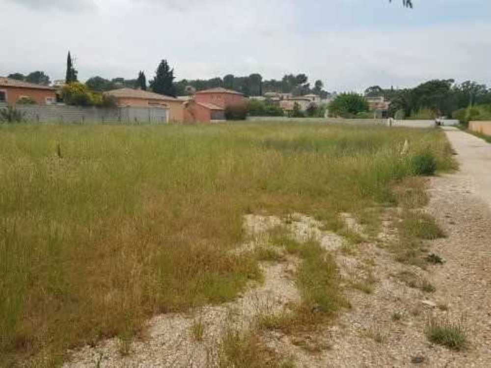 La Crau Var Grundstück Bild 4084990