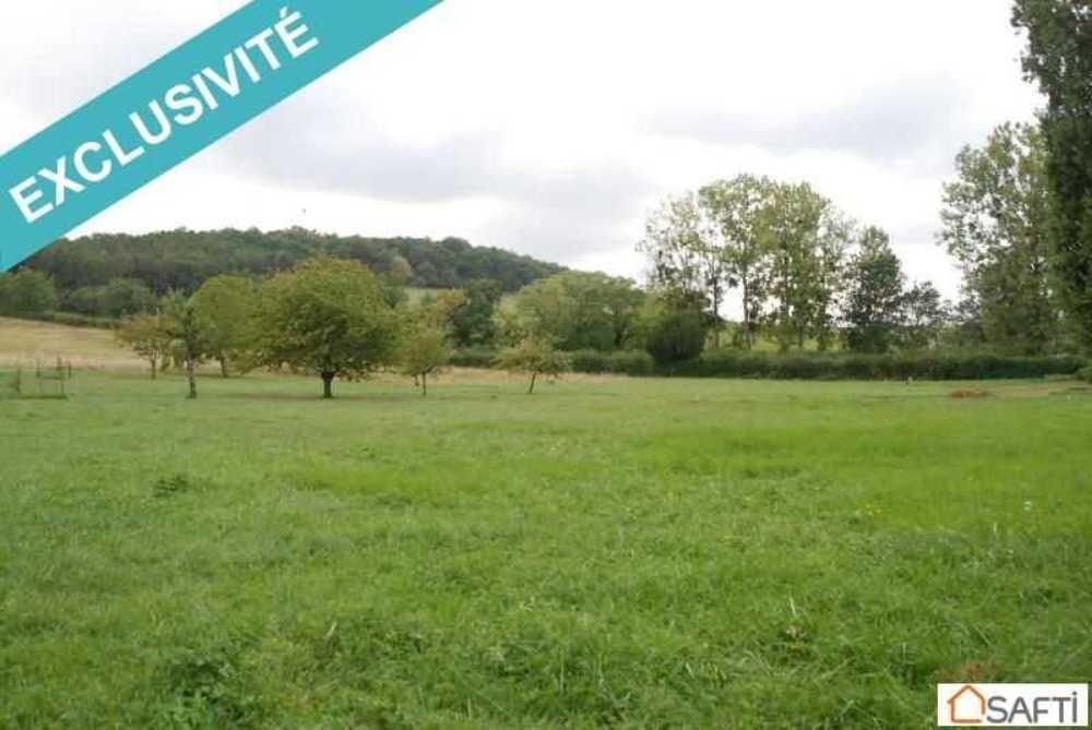 Chardonnay Saône-et-Loire terrein foto 4083883