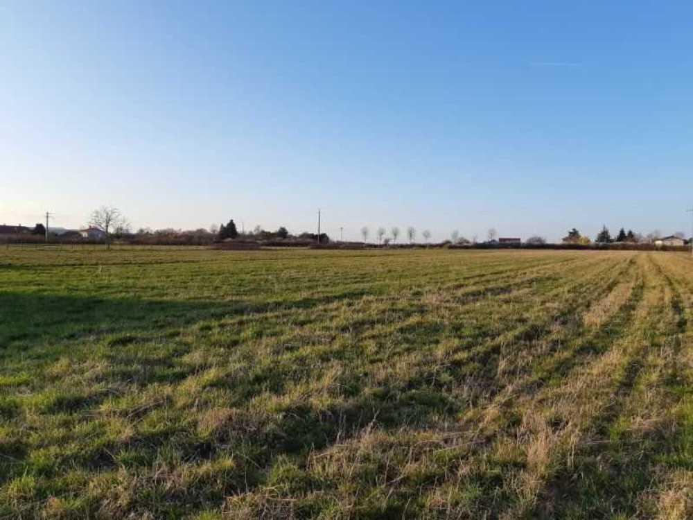 Boën Loire Grundstück Bild 4074886