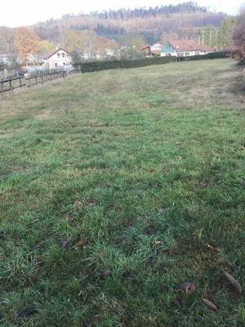 Docelles Vosges Grundstück Bild 4072968