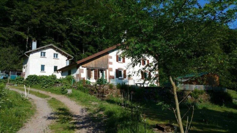 Tendon Vosges propriété photo 4148865