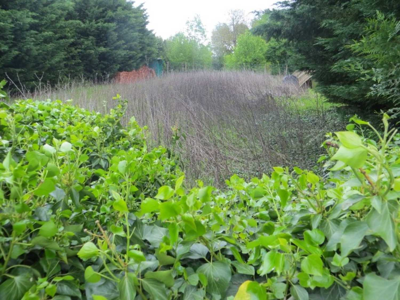Sours Eure-et-Loir terrain picture 4172524