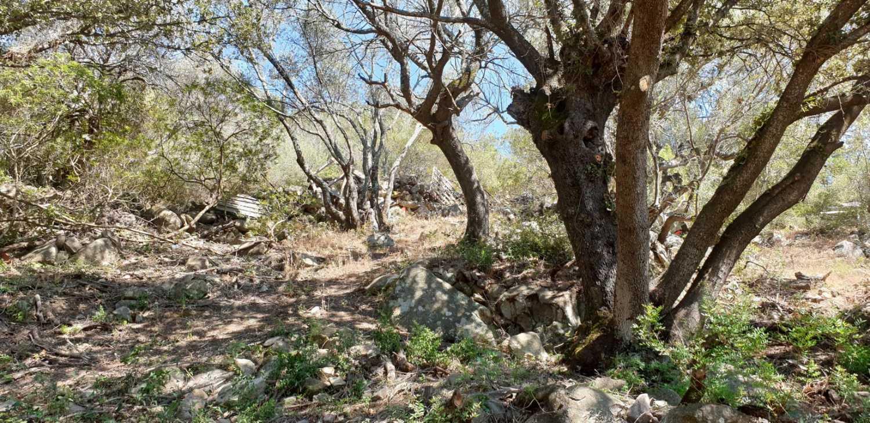 Figari Corse-du-Sud terrain photo 4171056