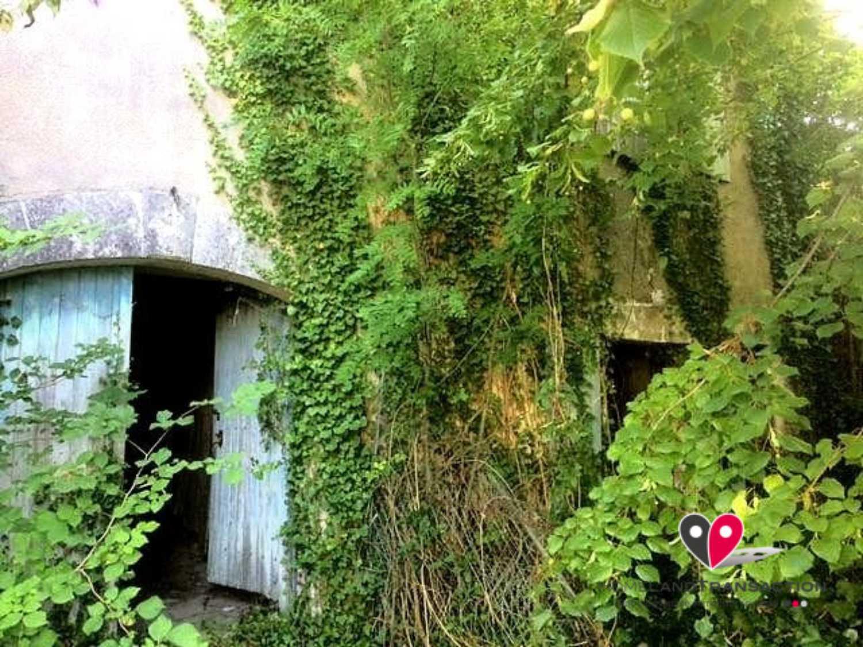 Lusignac Dordogne maison photo 4254956