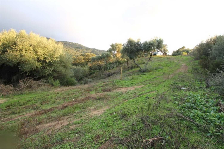 Sollacaro Corse-du-Sud Grundstück Bild 4248943