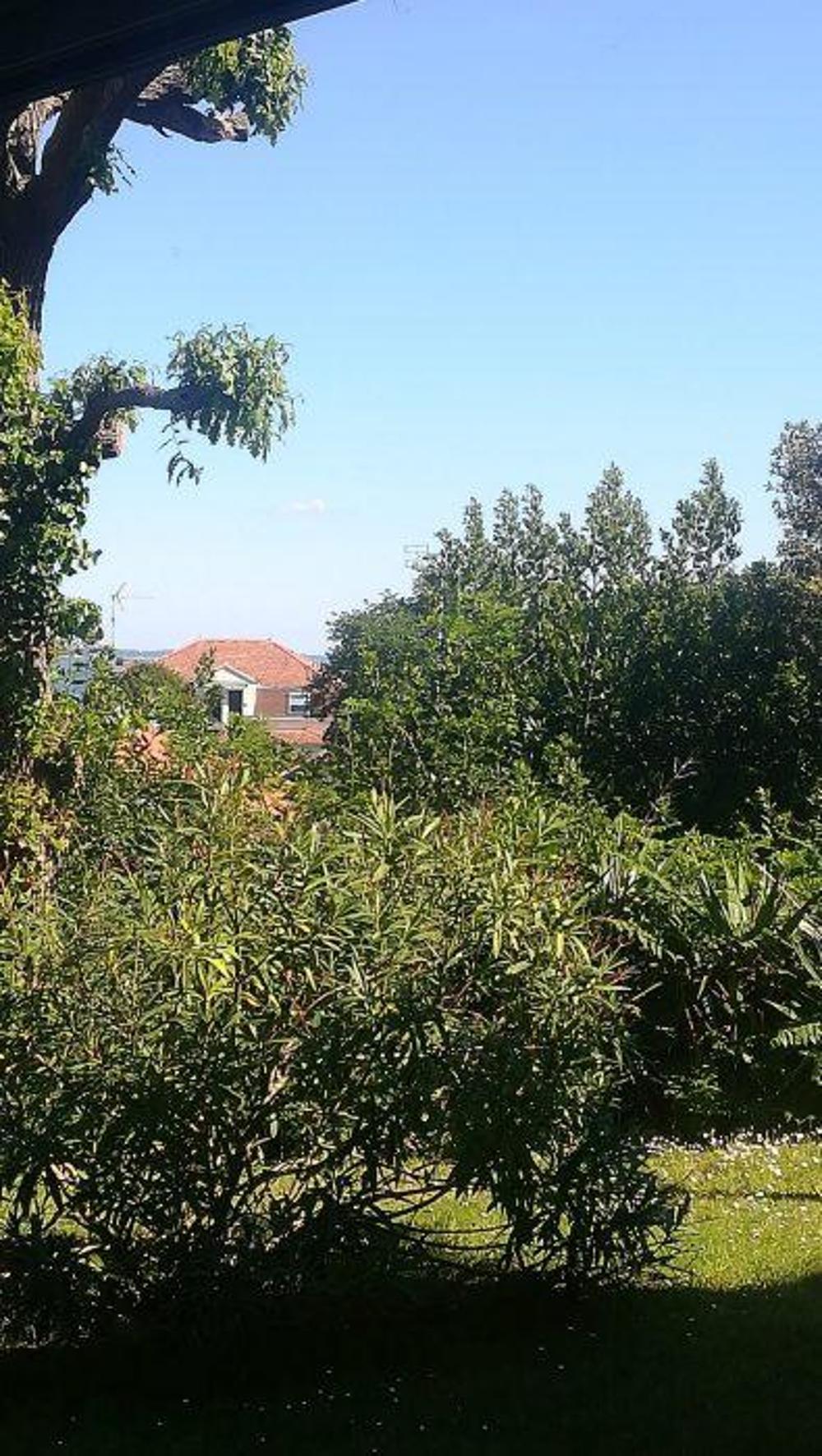 Arcachon Gironde Apartment Bild 4256253