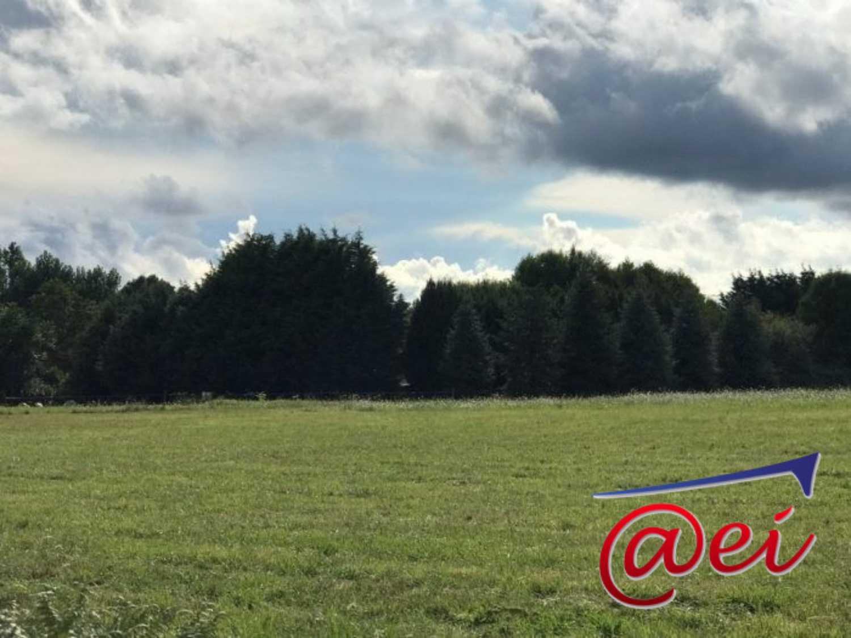Nevoy Loiret Grundstück Bild 4239380