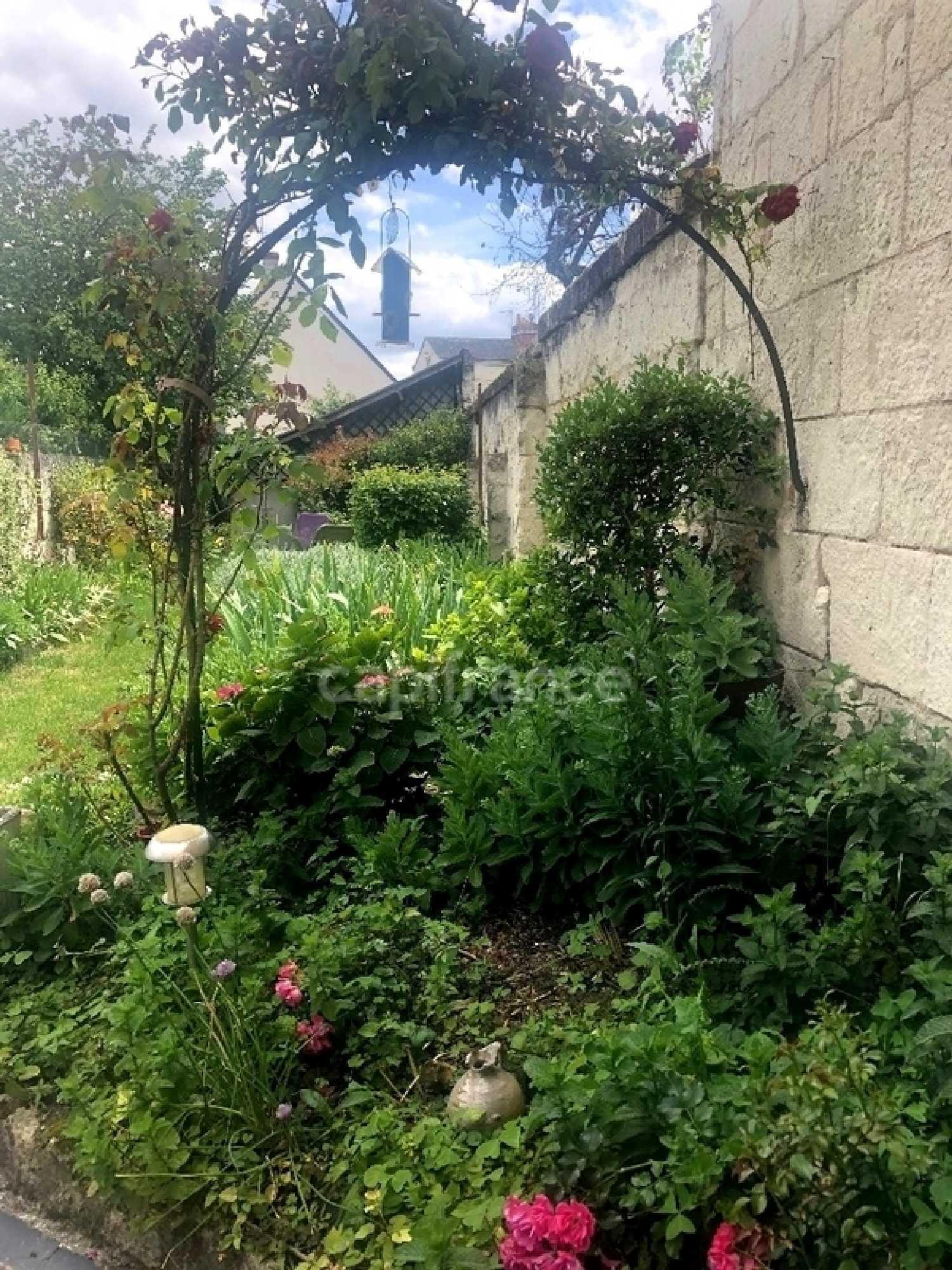 Saumur Maine-et-Loire Haus Bild 4249245