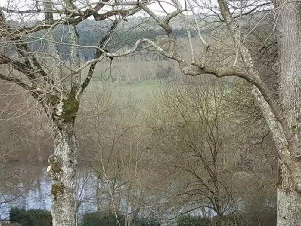 Seiches-sur-le-Loir Maine-et-Loire Grundstück Bild 4248292