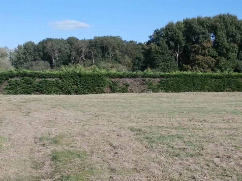 Jarzé Maine-et-Loire Grundstück Bild 4248289