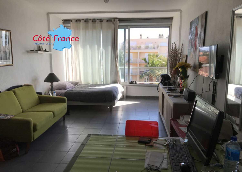 Saint-Cyprien Pyrénées-Orientales Apartment Bild 4247601