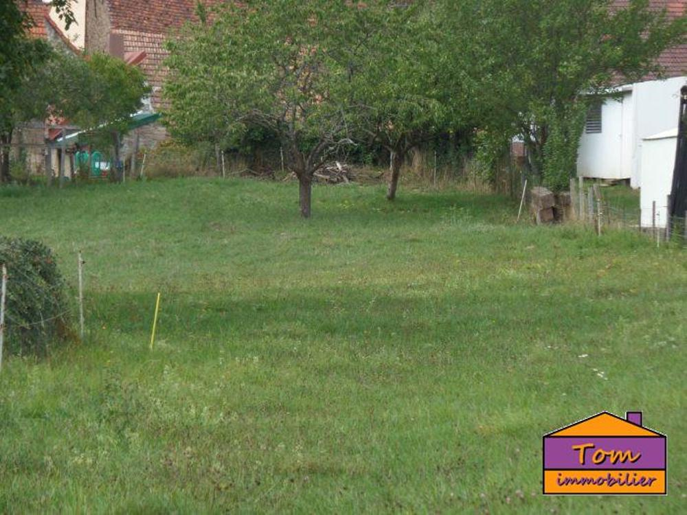 Ottwiller Bas-Rhin terrain picture 4249595