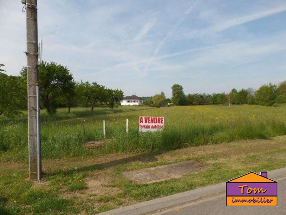 Loudrefing Moselle Grundstück Bild 4249601