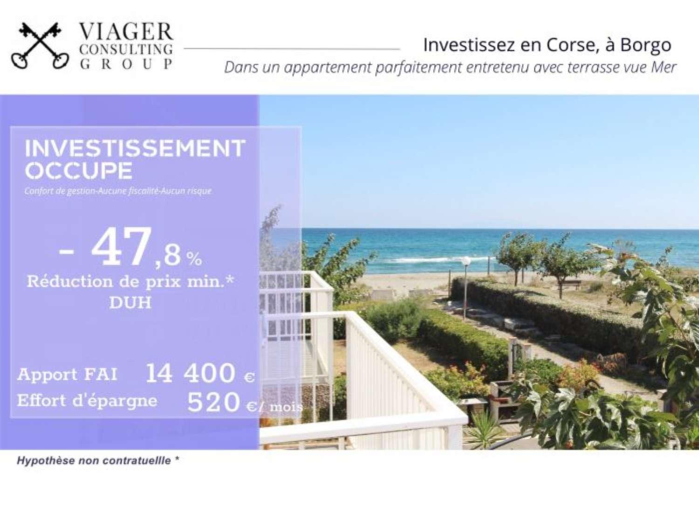 Borgo Haute-Corse appartement photo 4326227