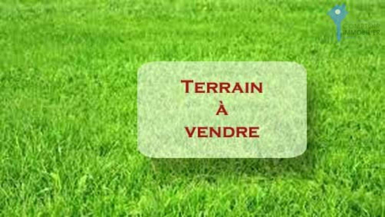 Villemandeur Loiret terrein foto 4278818