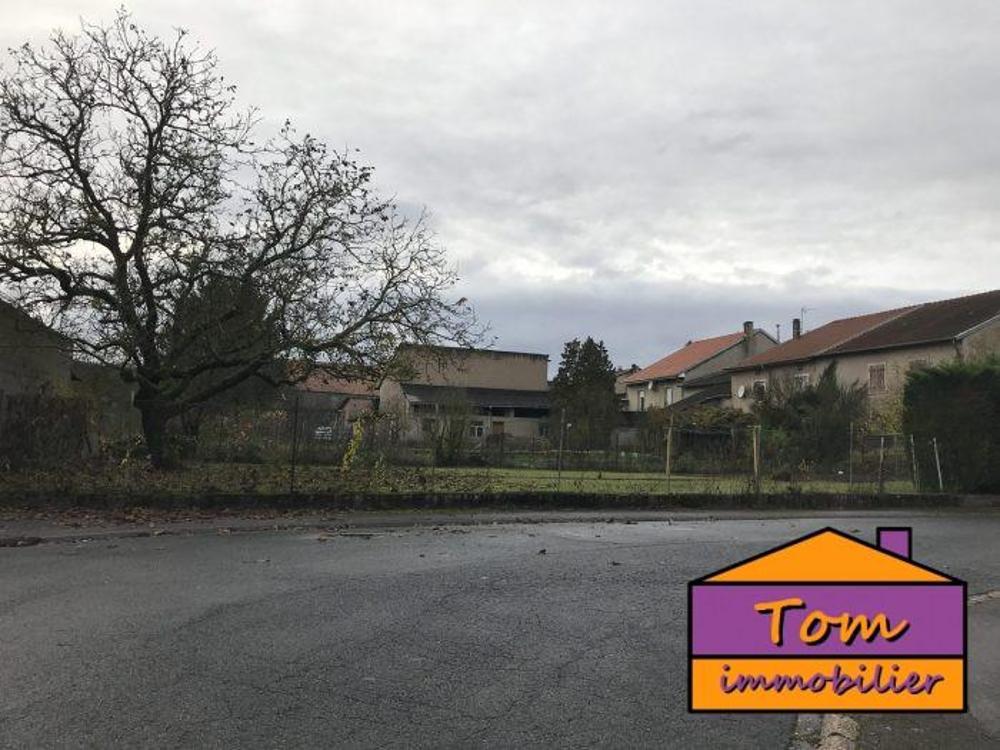 Bénestroff Moselle terrain picture 4662182