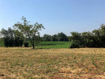 Polliat Ain terrein foto 4637236