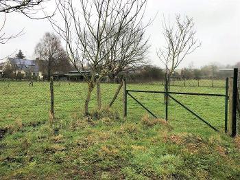 Montigné-les-Rairies Maine-et-Loire terrain picture 4674494