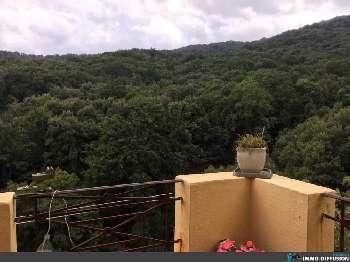 Lucciana Haute-Corse house picture 5173963