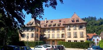 Sainte-Marie-aux-Mines Haut-Rhin apartment picture 5249968