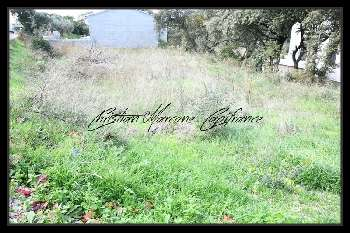Cavaillon Vaucluse terrain picture 5265645