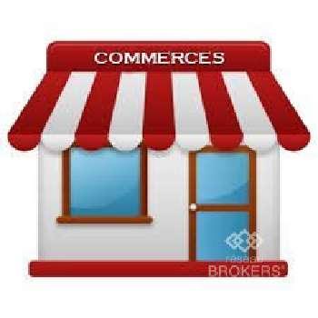 Maisons-Alfort Val-de-Marne commercial picture 5281757
