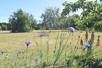 Le Luart Sarthe terrain picture 5294321