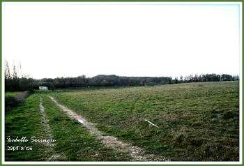 Saint-Nicolas-de-la-Grave Tarn-et-Garonne terrain picture 5296589