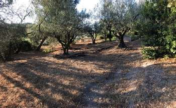Beaucaire Gard terrain picture 5291002