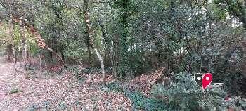 Puymoyen Charente terrein foto 5311171