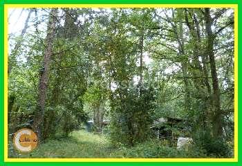 Langeais Indre-et-Loire terrein foto 5325602