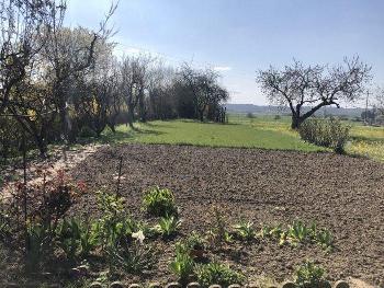 Lézigné Maine-et-Loire terrain picture 4700368