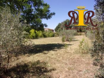 Saignon Vaucluse Grundstück Bild 4705561